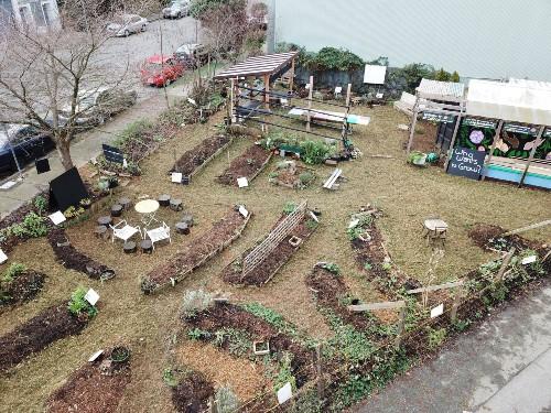 Collaborative garden image