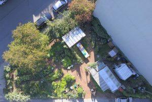 Collaborative garden birds eye view